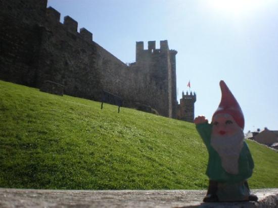 ปอนเฟร์ราดา, สเปน: Gnomo en Ponferrada. Castillo templario.