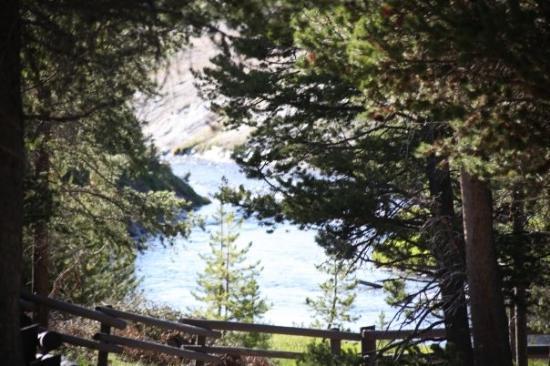 อุทยานแห่งชาติเยลโลว์สโตน ภาพถ่าย