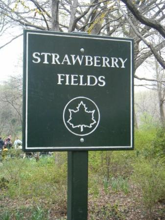 Strawberry Fields, John Lennon Memorial: foreverrr