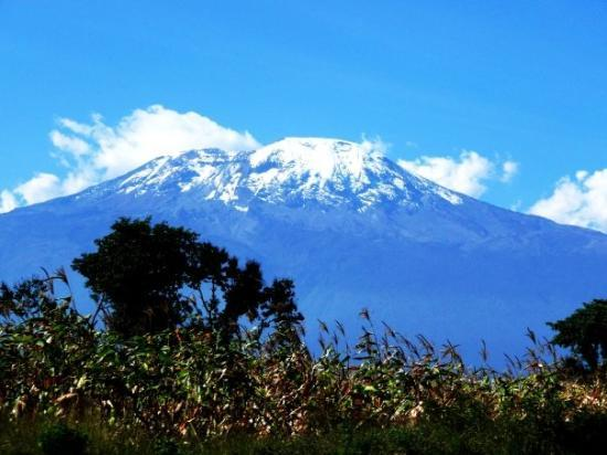 Kilimanjaro National Park, แทนซาเนีย: MT. KILIMANJARO - VIEW FROM CCS HOMEBASE