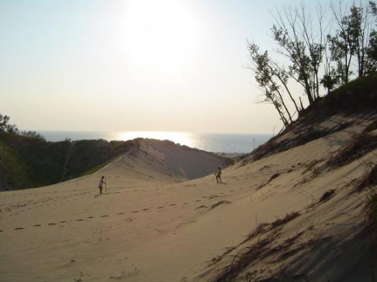 Sawyer, มิชิแกน: What a beautiful sight of Lake Michigan and the sand dunes!