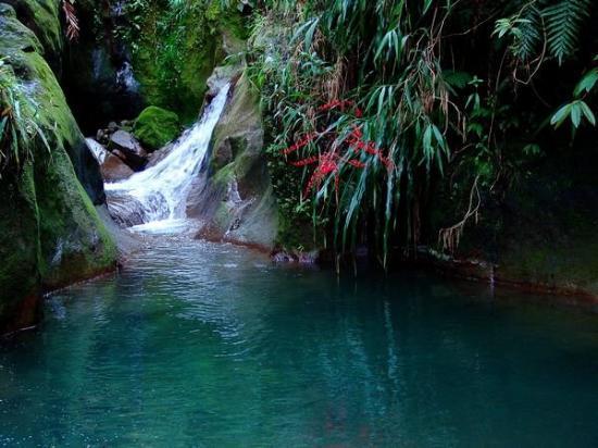 กวาเดอลูป: Une riviere parmis tant d'autres