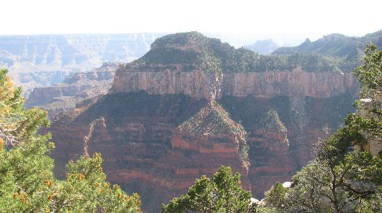 Grand Canyon North Rim: the north rim