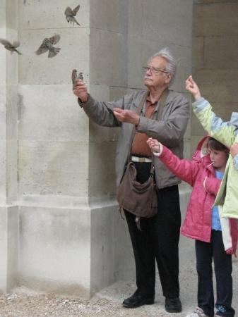 ประตูชัย: Paris, Champs Elisses, Arco de triunfo. Era asombroso como los pajaros se asentaban sobre el vie