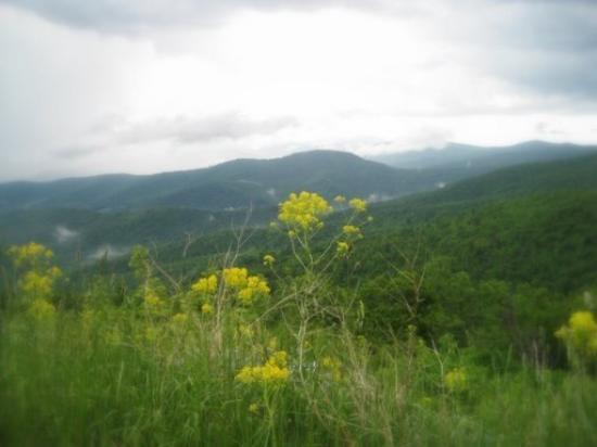 Shenandoah ภาพถ่าย