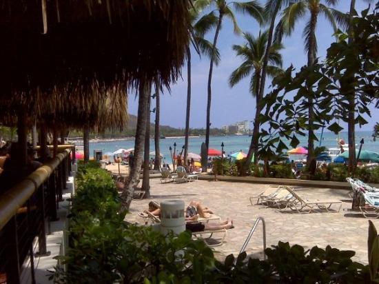 Duke's Waikiki: This is a great restaurant on Waikiki called Dukes on the Beach @ Waikiki.