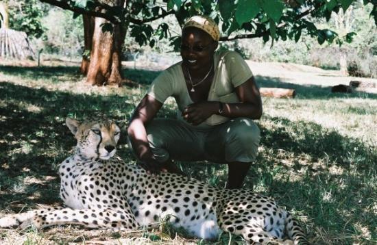 Nairobi Safari Walk: beauty of Kenya