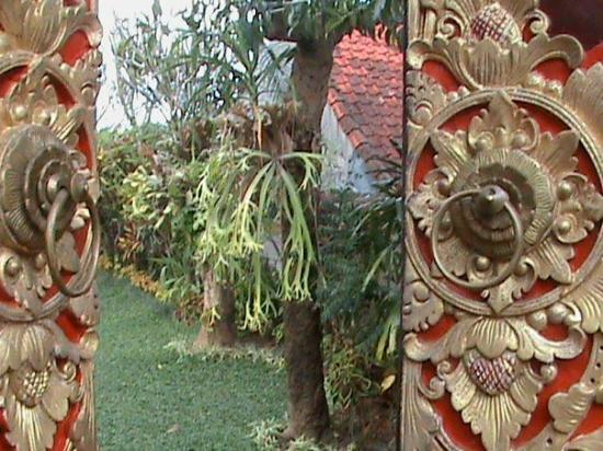 บาหลี, อินโดนีเซีย: DSC00021