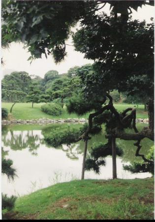 ชินากาวา ภาพถ่าย