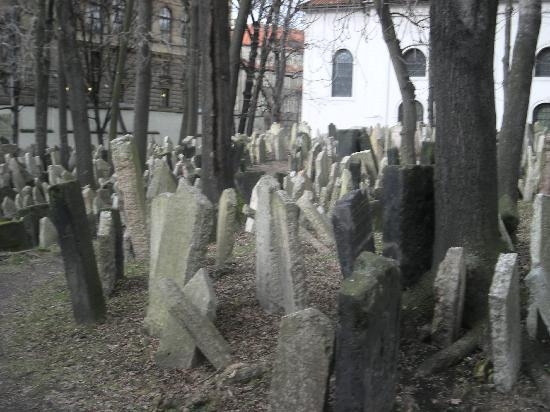 Jewish Museum in Prague: The largely intact Jewish cemetery