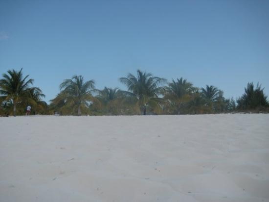 Cayo Largo ภาพถ่าย