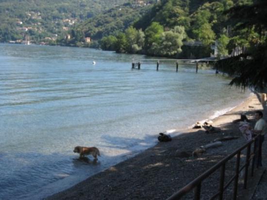 luino:lago maggiore