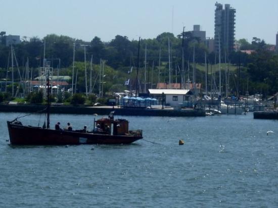 มาร์เดลพลาตา, อาร์เจนตินา: Mar del Plata, Argentina PASEO ANAMORA
