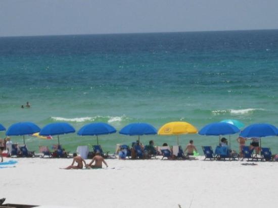 เดสติน, ฟลอริด้า: Destin, Florida...white sand, turquoise water.