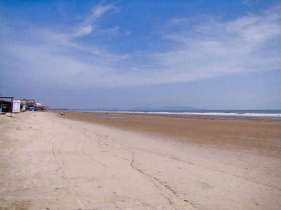 วุ้งเต่า, เวียดนาม: Beach not commercialised yet, check out the gradient of the beach... so gradual that you have to