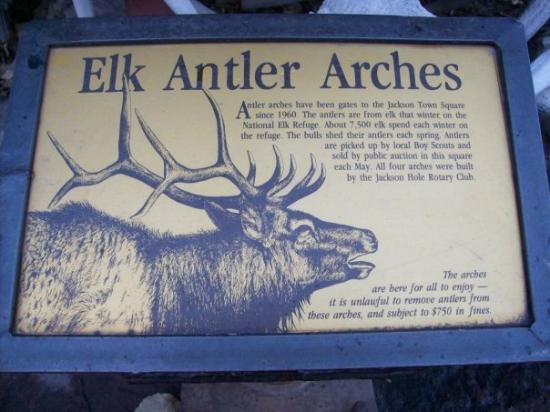 ไวโอมิง, มิชิแกน: Jackson Hole Wyoming : Elk Antler Arches.  In 1968, arches fashioned from shed elk antlers were