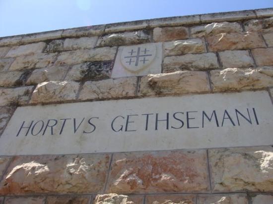 เยรูซาเล็ม, อิสราเอล: El Huerto de Getsemaní