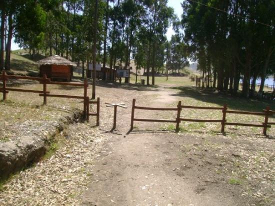 Valdivia, ชิลี: Reserva Costera
