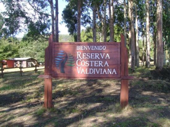 Reserva Costera Valdiviana