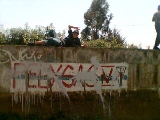 Algarrobo ภาพถ่าย