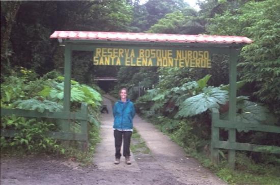 Monteverde Cloud Forest Reserve ภาพถ่าย