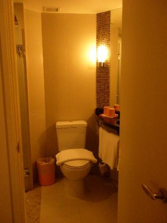 ไอบิส กรุงเทพฯ สุขุมวิท 4: Bathroom was clean but small