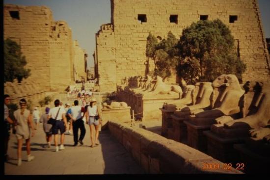 ลักซอร์, อียิปต์: LUXOR - EGITTO (VIAGGIO DI NOZZE 1995)