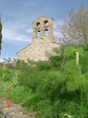Passignano Sul Trasimeno, อิตาลี: ISOLA MAGGIORE - LAGO TRASIMENO (2004)