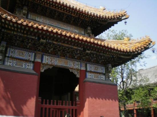 วัดลามะ (ยองกีกอง): Lama Temple