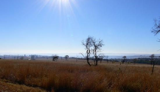 Pilanesberg National Park ภาพถ่าย