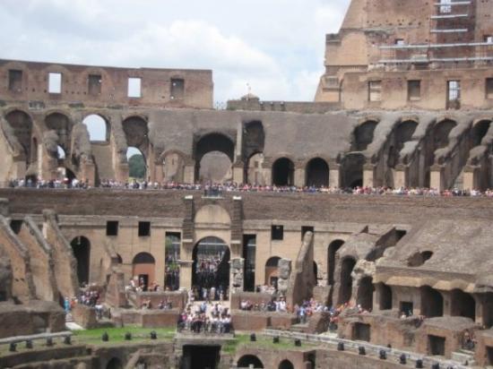 โคลอสเซียม: The colosseum