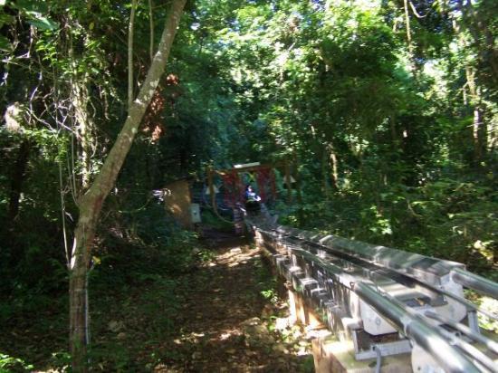 ออคโคริออส, จาไมก้า: I did the ride 4 times, twice with Matt's sled attached to mine.... I think Cedar Point needs on