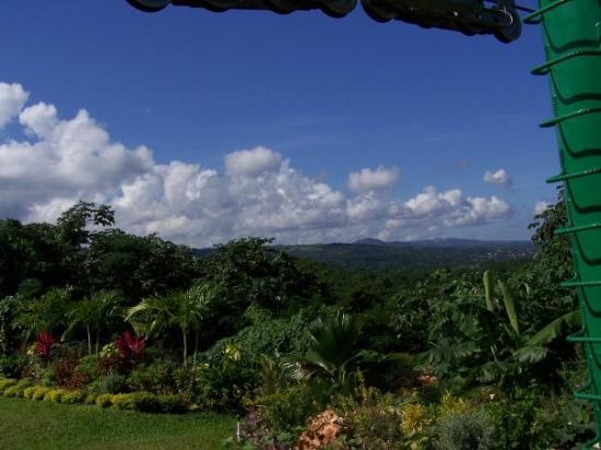 Ocho Rios, Jamaica: The view as we got on the chairlift for the last ride down.