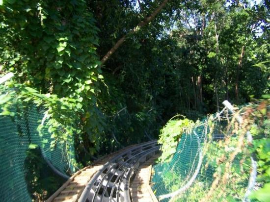 Ocho Rios, Jamaica: Jamican Bobsled ride