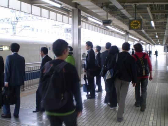 ชิซูโอกะ, ญี่ปุ่น: Shizuoka