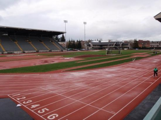 Eugene, Oregón: Hayward field track facility. Seats close to 10 000 and is used only for track
