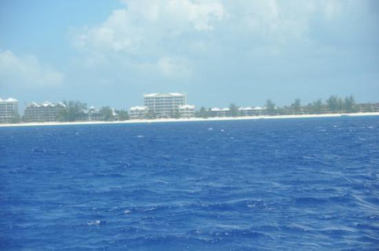 เซเว่นไมล์บีช, เกาะแกรนด์เคย์แมน: Seven Mile Beach in Grand Cayman