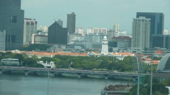 โรงแรมราฟเฟิลส์: Singapore - Singapore Flyer - View of Raffles Hotel (orange rooves above tree line).