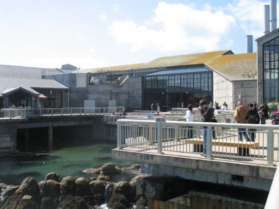Monterey Picture Of Monterey Monterey County Tripadvisor