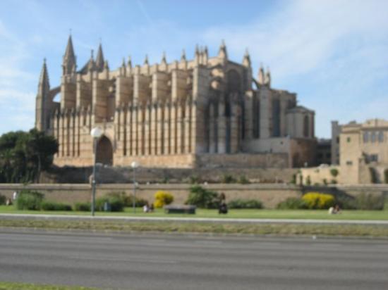มาจอร์กา, สเปน: catedral de palma de mallorca