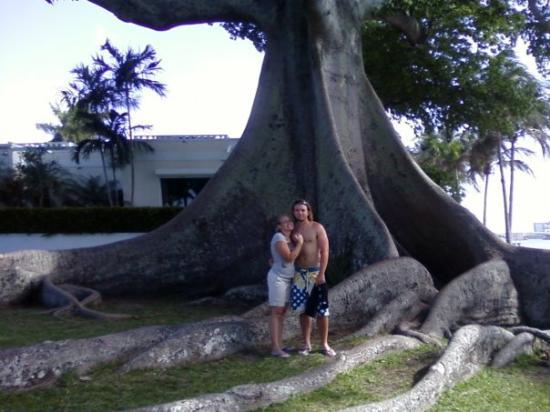 Henry Morrison Flagler Museum: Grant and I at big tree.  From the Cell
