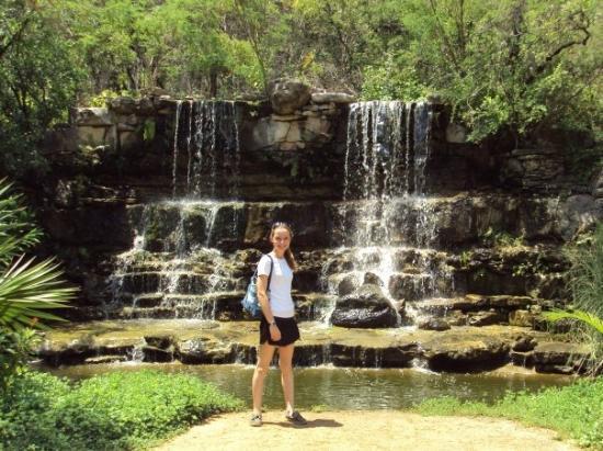 Zilker Botanical Garden ภาพถ่าย