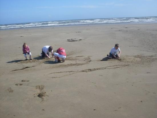 เวกซ์ฟอร์ด, ไอร์แลนด์: De kids on de beach