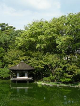 Wakayama Castle ภาพถ่าย