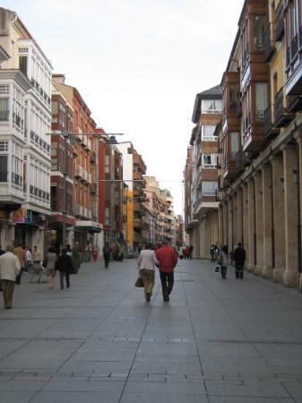 ปาเลนเซีย, สเปน: Calle Mayor