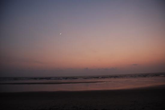 Elsewhere - The Beach Houses : beach