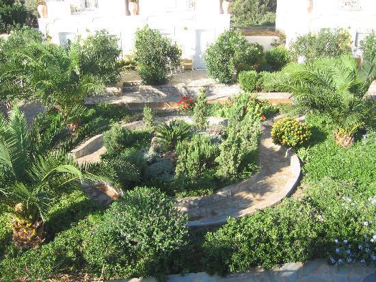 DeAngelo Hotel Apartments: garden