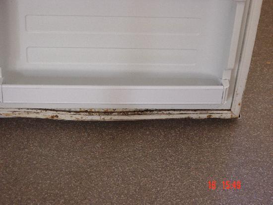 Pontin's Camber Sands Centre: dirty fridge yuk !