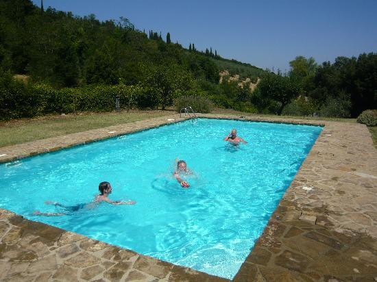 Fattoria San Donato: the pool