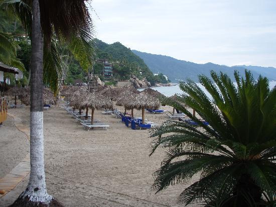 Hyatt Ziva Puerto Vallarta: Dreams Beach